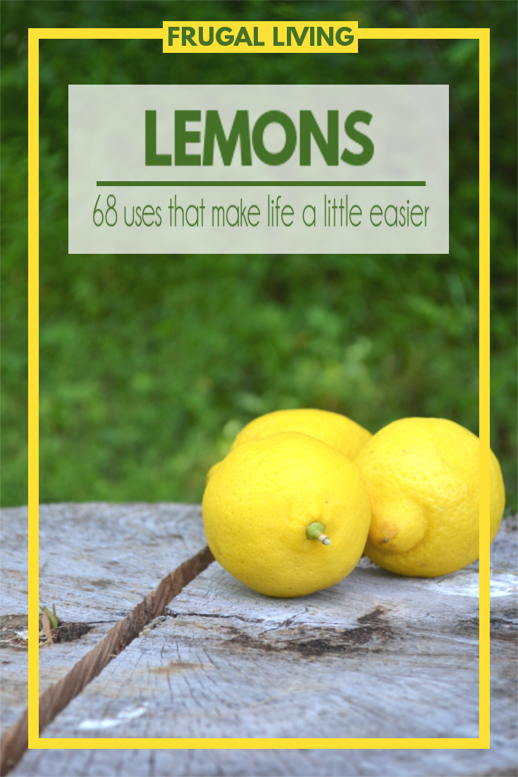 These sour little bursts of sunshine are one of the most amazing fruits. They're not only delicious in so many recipes, but they can do so many things to make your life a little more manageable.