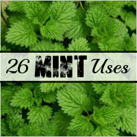 Frugal Living with Mint