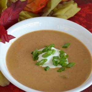 Curried Pumpkin Soup Recipe   Fluster Buster