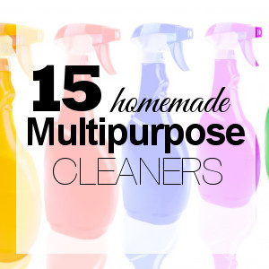 Replace Cleaning Products w/Homemade Multipurpose Cleaners