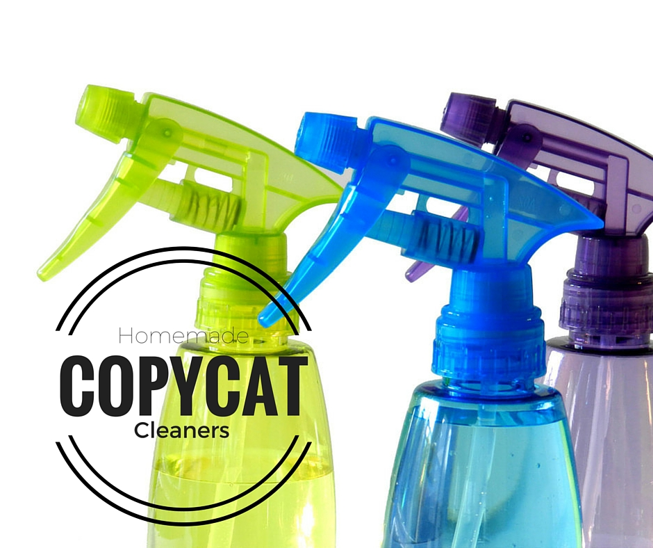 17 of the Best Copycat Cleaning Recipes