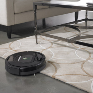 Fluster Buster Treasure: Robotic Vacuum