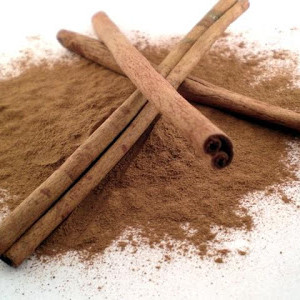 Frugal Living with Cinnamon