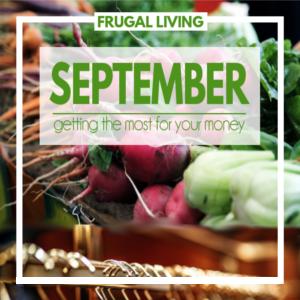 September- Frugal Finds