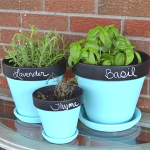 How to Make Chalkboard Herb Garden Planters